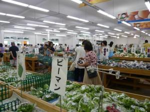 貝塚の野菜